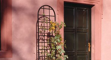 De Orangerie - voor een exclusieve Rozenboog of Obelisk - Rozen trellis