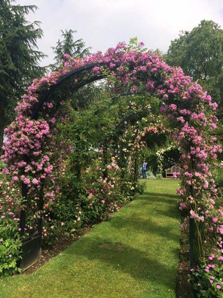Portofino rozenboog zonder plantenbakken