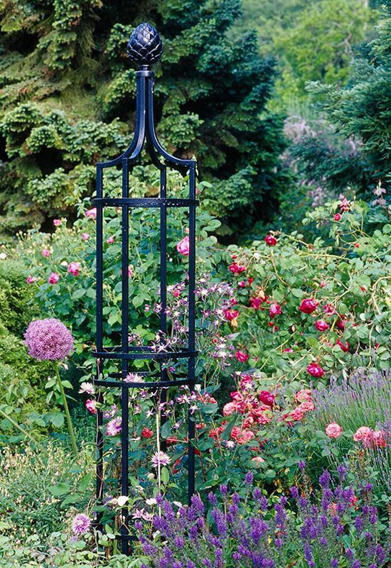 De Orangerie - voor een exclusieve Rozenboog of Obelisk - Rozen Obelisk I