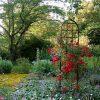 De Orangerie - voor een exclusieve Rozenboog of Obelisk - Rozen trellis Burlington